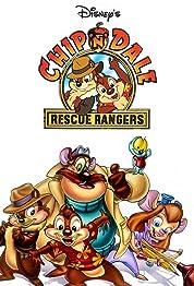 Chip 'n' Dale Rescue Rangers - Season 2 (1989) poster