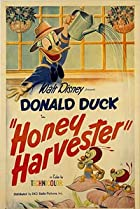Honey Harvester (1949) Poster