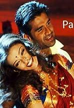 Hum Panchi Ek Daal Ke