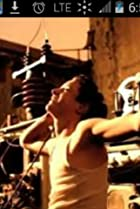 Image of The Cranberries: The Best Videos 1992-2002