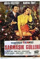 Image of Sarmasik gülleri