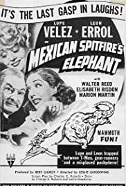 Mexican Spitfire's Elephant Poster
