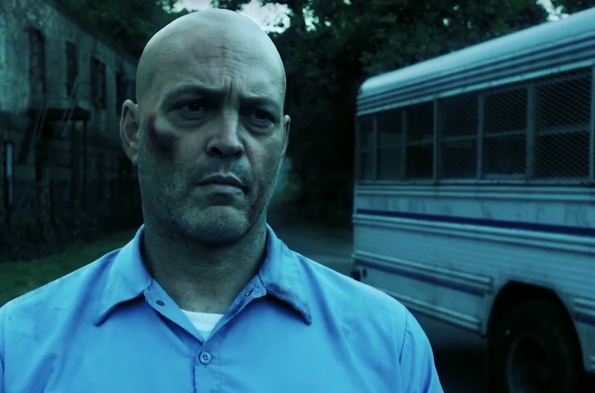 Brawl in Cell Block 99 (2017), Online Subtitrat