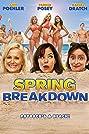 Spring Breakdown (2009) Poster