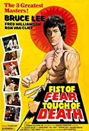 Fist of Fear, Touch of Death (Hindi)