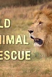 Wild Animal Rescue