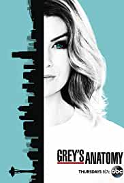 Grey's Anatomy tv poster