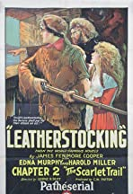 Leatherstocking