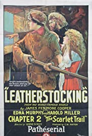 Leatherstocking Poster