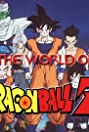 The World of Dragon Ball Z (2000) Poster