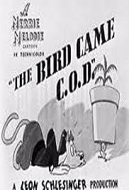 The Bird Came C.O.D. Poster