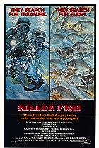 Image of Killer Fish