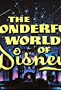 The Wonderful World of Disney (1995) Poster
