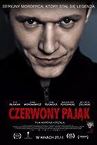 Image of Czerwony pajak