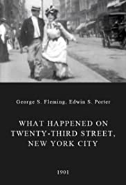 What Happened on Twenty-third Street, New York City (1901) Poster - Movie Forum, Cast, Reviews