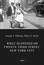 What Happened on Twenty-third Street, New York City(1901) Poster - Movie Forum, Cast, Reviews