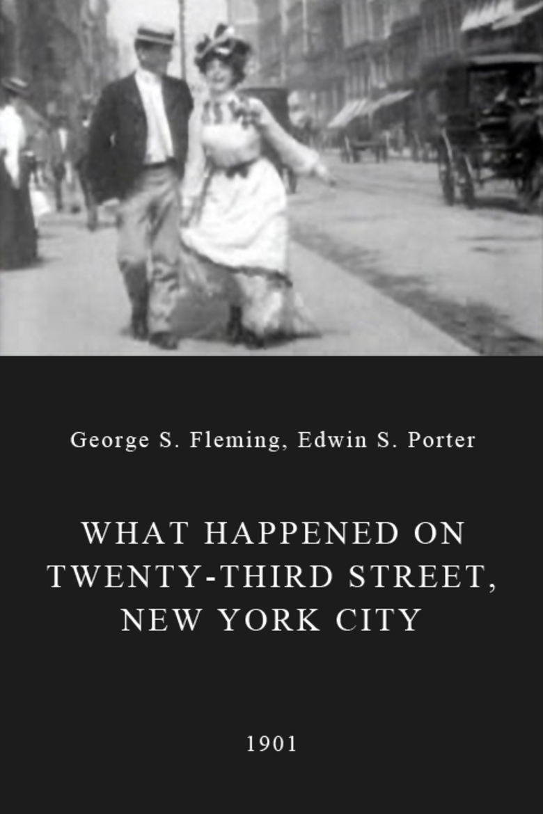What Happened on Twenty-third Street, New York City