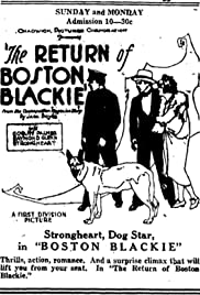 Image result for The Return of Boston Blackie 1927