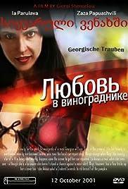 Georgische Trauben Poster