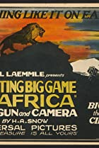 Image of Hunting Big Game in Africa with Gun and Camera