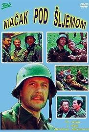 Zelena mrkvica Poster