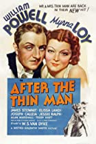 Image of After the Thin Man