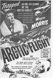 Arctic Flight Poster
