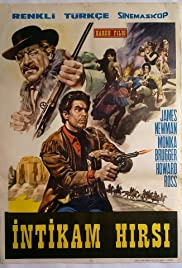 Wanted Johnny Texas Poster
