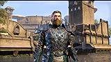 Elder Scrolls Online (VG)