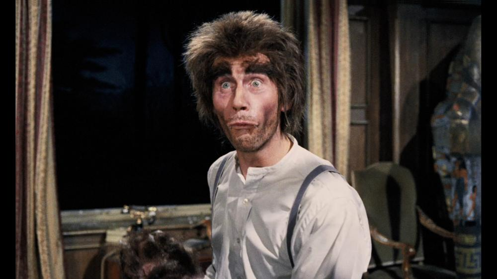 Image result for carry on screaming