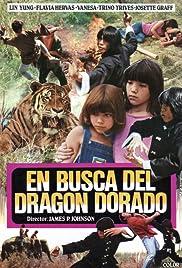 En busca del dragón dorado Poster