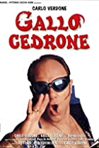 Image of Gallo cedrone