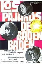 Image of Los pájaros de Baden-Baden