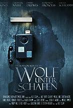 Primary image for Wolf unter Schafen