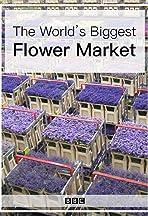 The World's Biggest Flower Market