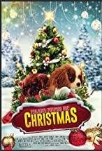Primary image for Project: Puppies for Christmas