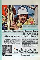 Image of Mamba