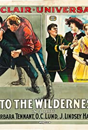 Into the Wilderness Poster