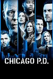 Chicago P.D. - Season 2 poster