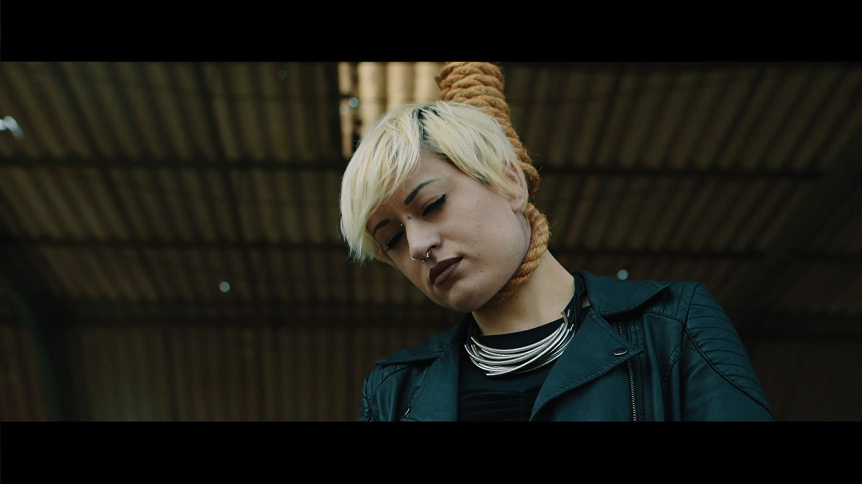 Maverick: Manhunt Brazil (2017), filme online subtitrate în Română