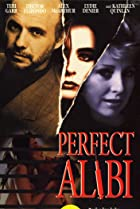 Image of Perfect Alibi