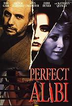 Primary image for Perfect Alibi