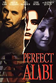 Perfect Alibi (1995) Poster - Movie Forum, Cast, Reviews