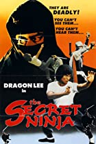 Image of Secret Ninja