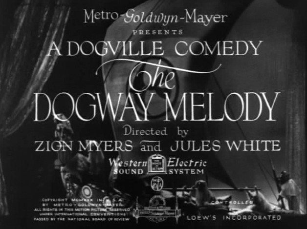 image The Dogway Melody Watch Full Movie Free Online