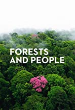 Forests and People