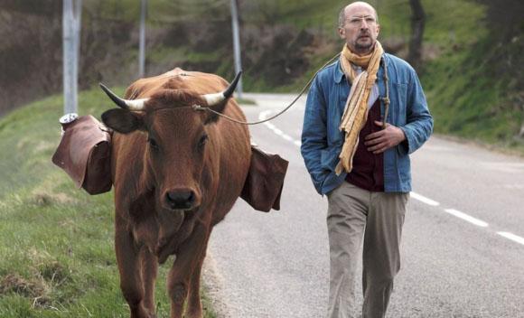 No se metan con mi vaca (La vache)