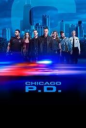 Chicago P.D. - Season 1 poster