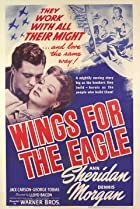 Image of Wings for the Eagle