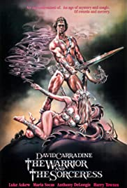 The Warrior and the Sorceress (1984) Poster - Movie Forum, Cast, Reviews